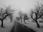 winter-84303_640