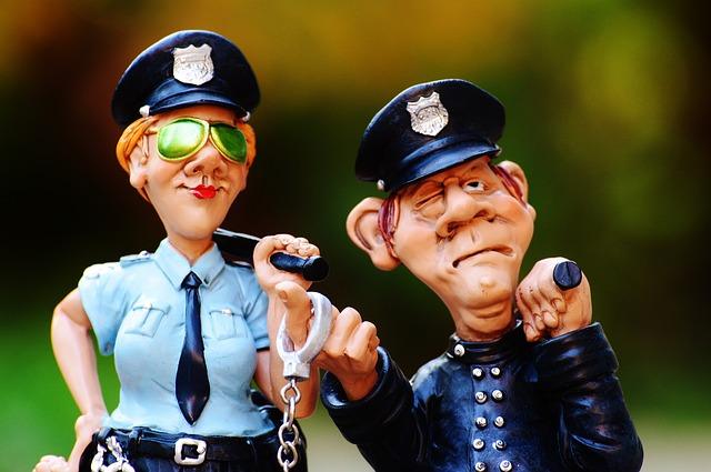 cop-1016216_640