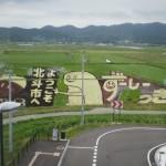 新函館北斗駅でずーしーほっきーの田んぼアートが見える場所は?いつまで見られる?