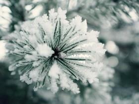 iced-1109297_640