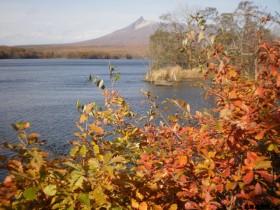 大沼公園の紅葉と駒ケ岳