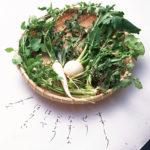 北海道では七草粥を食べない?その理由を道民が解説